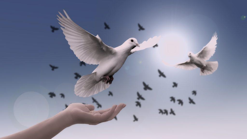 liberacion divina dios